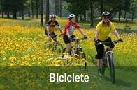 biciclete, ciclism la Manastirea Humorului